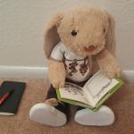 hoppy reading