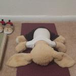 Hoppy doing yoga