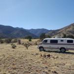 Camping in the van