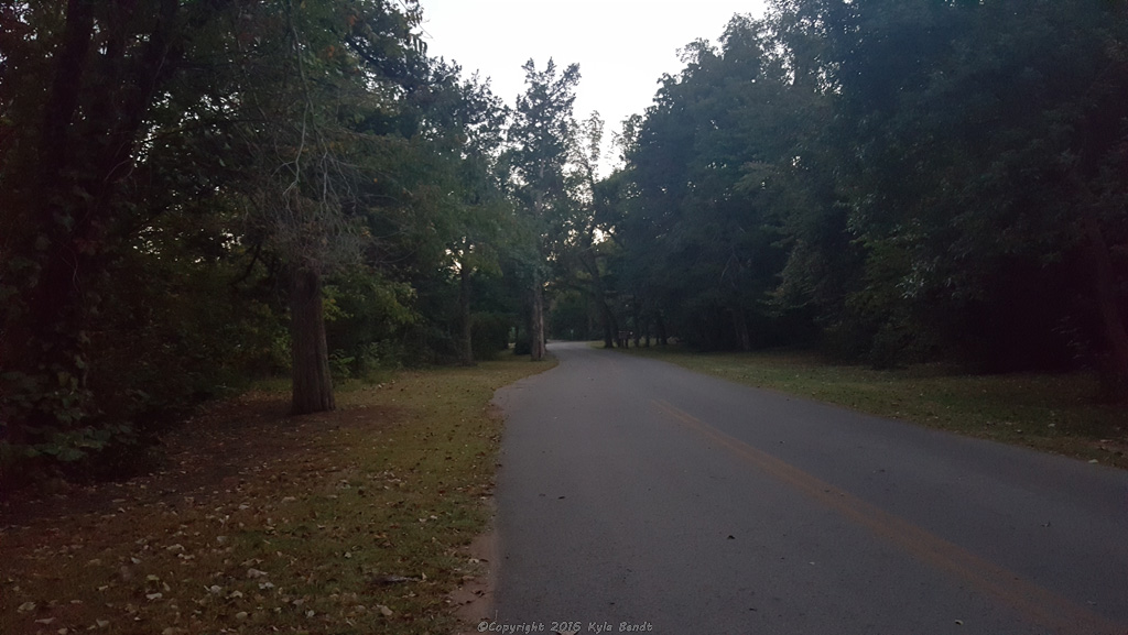 The road leading through the park.