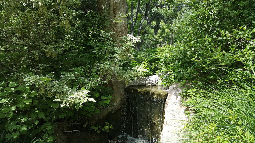 ABQ BioPark Botanic Garden