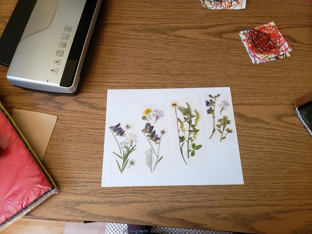 laminated flower bookmarks